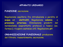 lezione cevese 11 (vnd.ms-powerpoint, it, 5139 KB, 1/10/12)