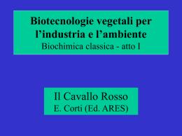 Biochimica classica atto I (ovverosia le basi)