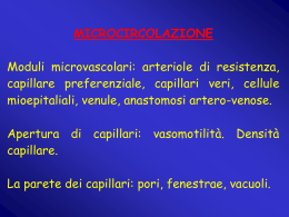 n° 13 - circolazione 6 (vnd.ms-powerpoint, it, 480 KB, 12/19/02)