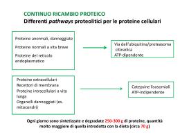 lezione-SNU-10 proteine