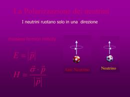 polarizzazione dei - INFN Sezione di Ferrara