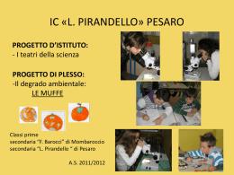le muffe - Pirandello