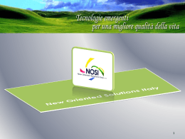 NOSI - New Oriented Solutions Italy srl