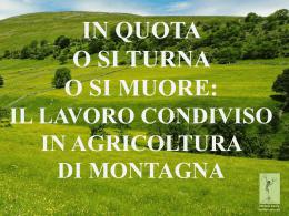 - Michela Zucca