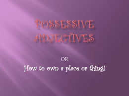 Possessive adjectives tells us who is the owner of a
