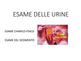 Analisi delle urine