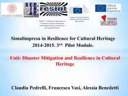 the final presentation of Disaster mitigation and resilience