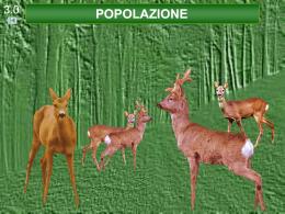 popolazione - Urca Siena