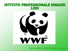 versione 2 - Istituto Einaudi Lodi
