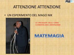 pps matemagia