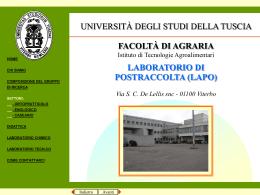 file pps 8,5 Mb - Università degli Studi della Tuscia