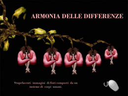 armonia delle differenze
