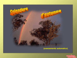 splendore d`autunno