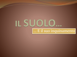 IL SUOLO* - Scuola Secondaria di I° grado Statale Raffaello Sanzio