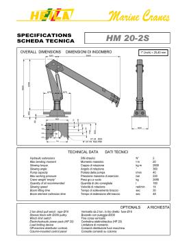 CRICCHETTO TIE DOWN STRAP J-HOOK 4m x 30mm-Rated capacità 400KG 1200Kg