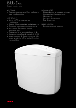 KARIBA serie 255353CH Tubo champagne scomponibile 50x32x980 mm