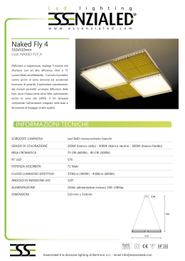 Naked Fly 4