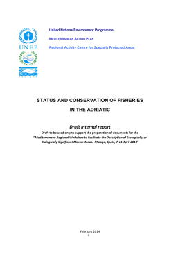 Status and Conservation of Fisheries in the Adriatic