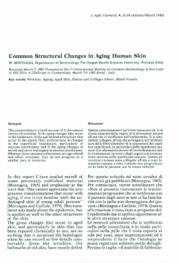Common Structural Changes in Aging Human Skin