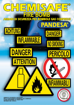 Guida all uso delle bombole per gas compressi disciolti o - Bombole di gas per cucinare ...