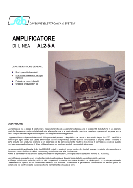 AMPLIFICATORE - seb barlassina