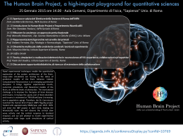 The Human Brain Project, a high-impact playground