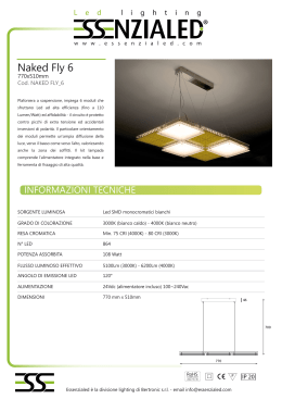 Essezialed Naked Fly 6