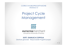 Project Cycle Management pdf 356,8 Kb