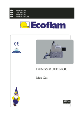 DUNGS MULTIBLOC Max Gas