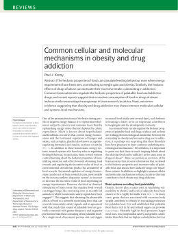Common cellular and molecular mechanisms in obesity and drug