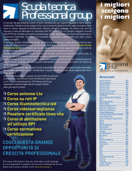 Campagna stampa - Professional Group, Specialisti in Elettronica