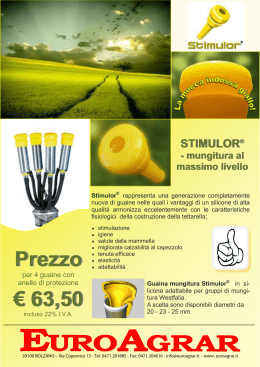 Volantino Siliconform.it