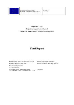 Final Report - Hadron Physics 2