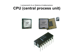 CPU (central process unit)