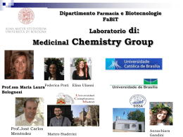 Medicinal Chemistry Group Laboratorio di