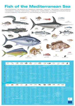 Fish of the Mediterranean Sea