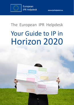 The European IPR Helpdesk - Your Guide to IP in Horizon 2020
