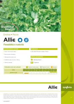 Allie - Syngenta