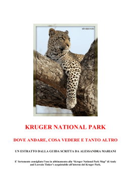 GUIDA AL KRUGER - Travel Revolution