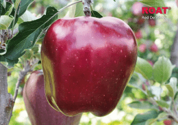 Produktblatt ROAT(S) KING Red Delicious