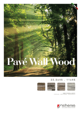 CAT.PAVÉ WALL WOOD (FMT 21X29) in f.to PDF