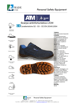 Personal Safety Equipment Scarpa antinfortunistica LION