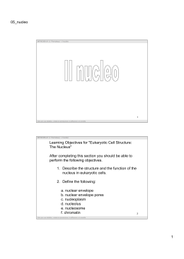 05_nucleo 1 1. Describe the structure and the function of the