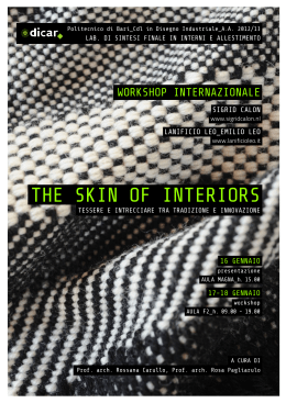 THE SKIN OF INTERIORS
