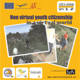 Non virtual youth citizenship in a virtual world