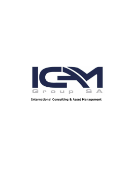International Consulting & Asset Management