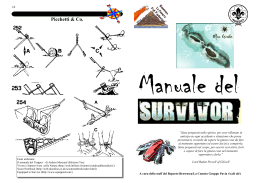 00-01 - Manuale survivor.pub