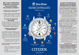 ECO_AS20 - Timeservice.it