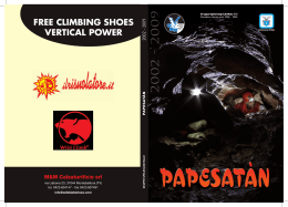 free climbing shoes vertical power