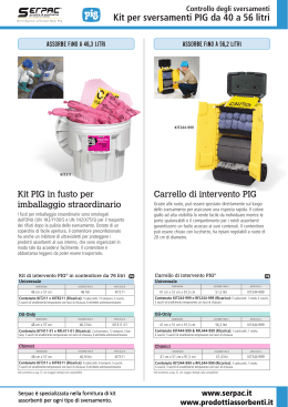 Kit per sversamenti da 40 a 56 litri serpac.it
